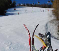 skiing winter sun